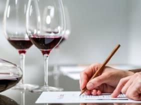 Oferta Curso online de cata de vinos
