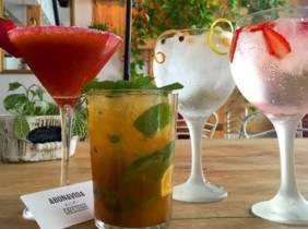 Oferta Copas o cocktails y raciones